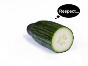 cucumber consists