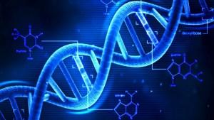 dna molecule complementary base pairing hydrogen bonds