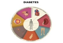 Diabetes Prevention meat seafood and fish blood sugar must be organic
