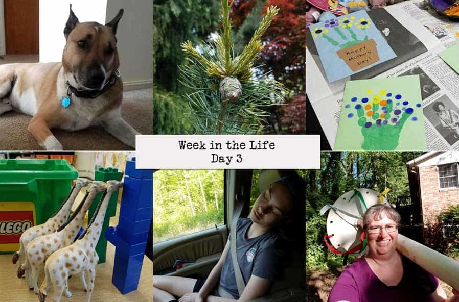 Wednesday (Week in the Life 2018 Day 3) via @behindeveryday