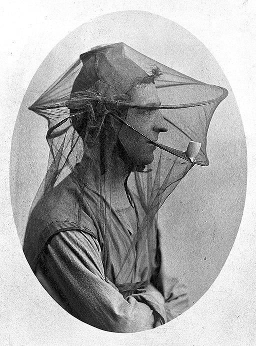 mosquito net veil old postcard man wearing veil