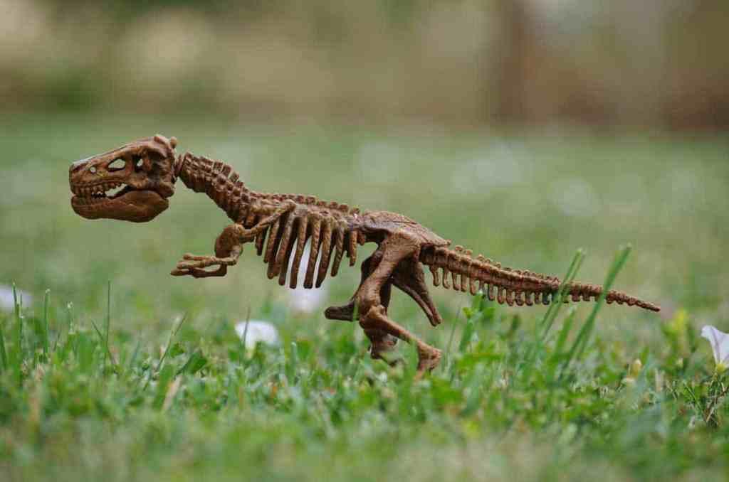 dinosaur toy in grass t rex