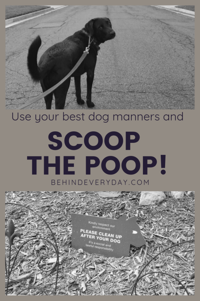 This sign says it all... cleaning up after your dog is important for the environment and it's also a social and lawful responsibility. So use your best dog manners and scoop the poop!