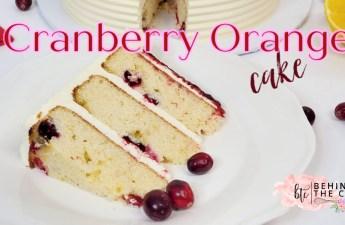 Cranberry Orange Cake recipe slice