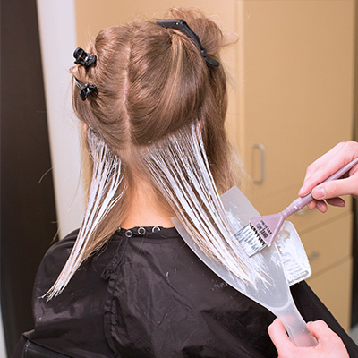 apply hair lightener, stroking the product upward onto the surface of the hair