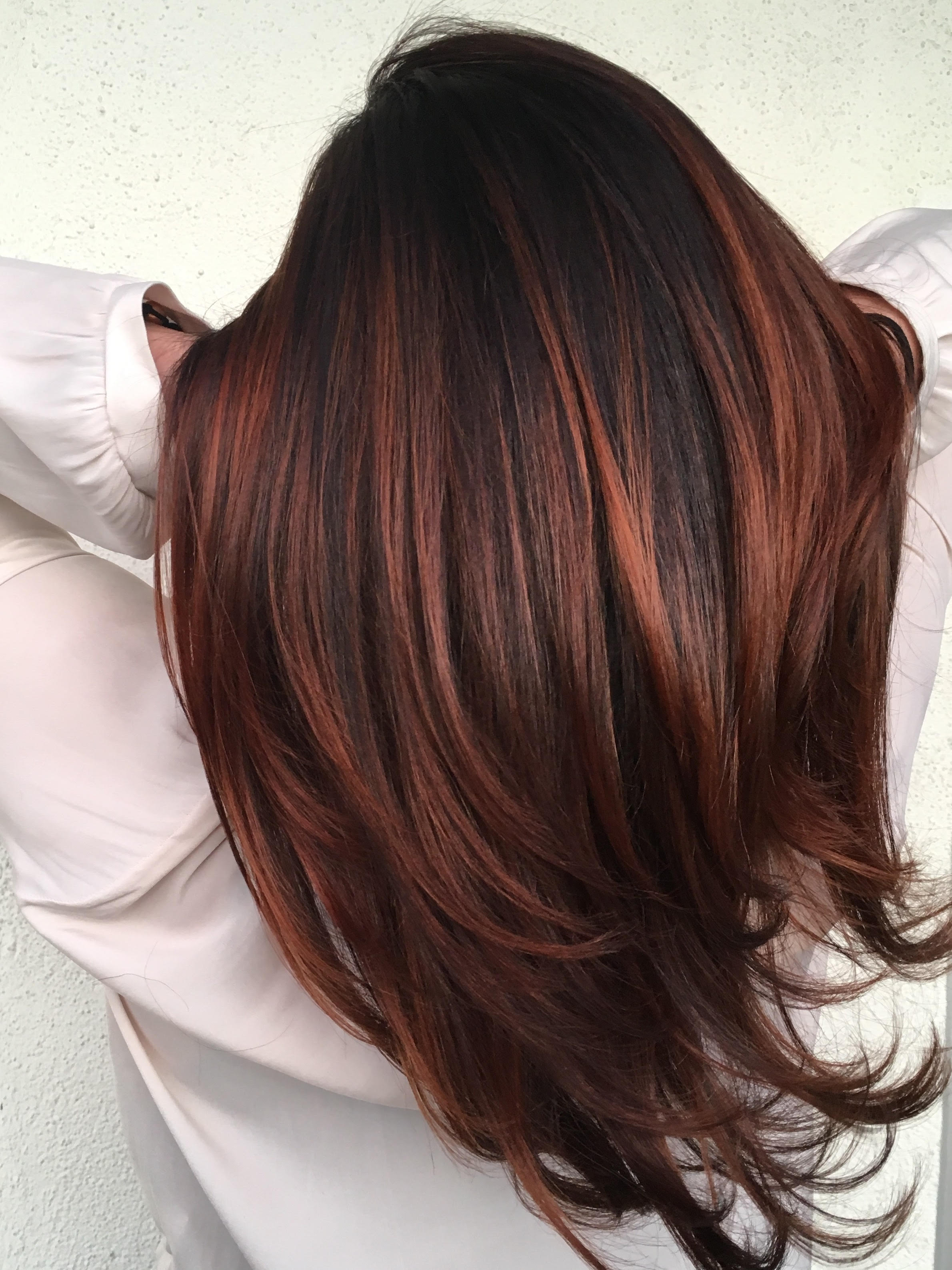 Red Hot Balayage  Behindthechaircom