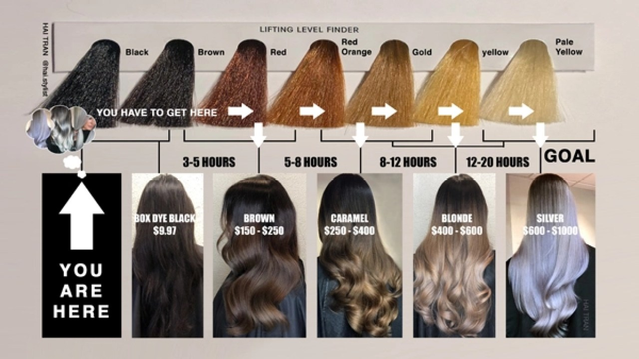 This Diagram Will Help You Price Time Black To Blonde