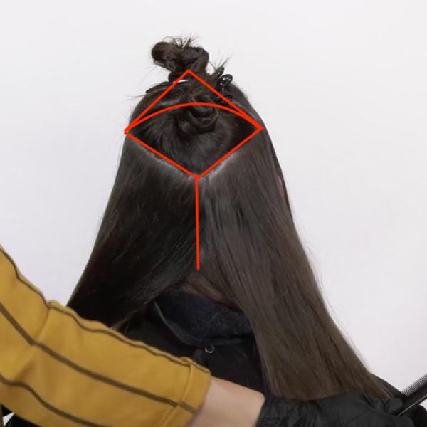 Joico Larisa Love Video How-To Diamond Balayage Technique Section Diagram