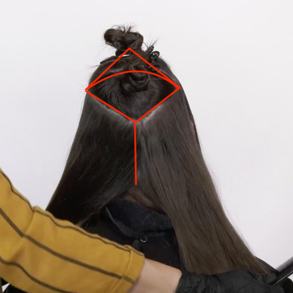 Joico Larisa Love Video How-To Diamond Balayage Technique Section Diagram