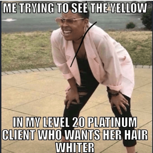 me trying to see the yellow in my level 20 platinum client who wants her hair whiter - funny meme - Behindthechair.com's Top Instagram Memes of 2018