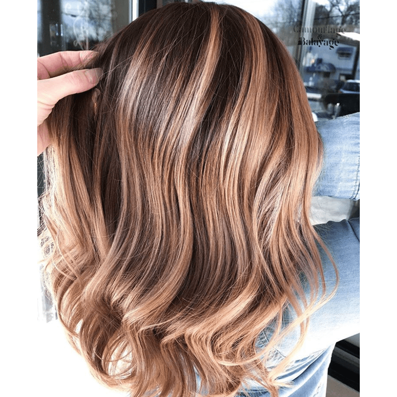 2019 Hair Trend Predictions Celebrity Hair Instagram Trends Nude Balayage