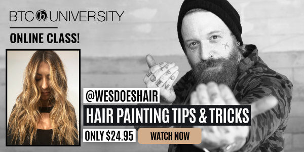 wes-palmer-hairpainting-livestream-banner-new-price-small