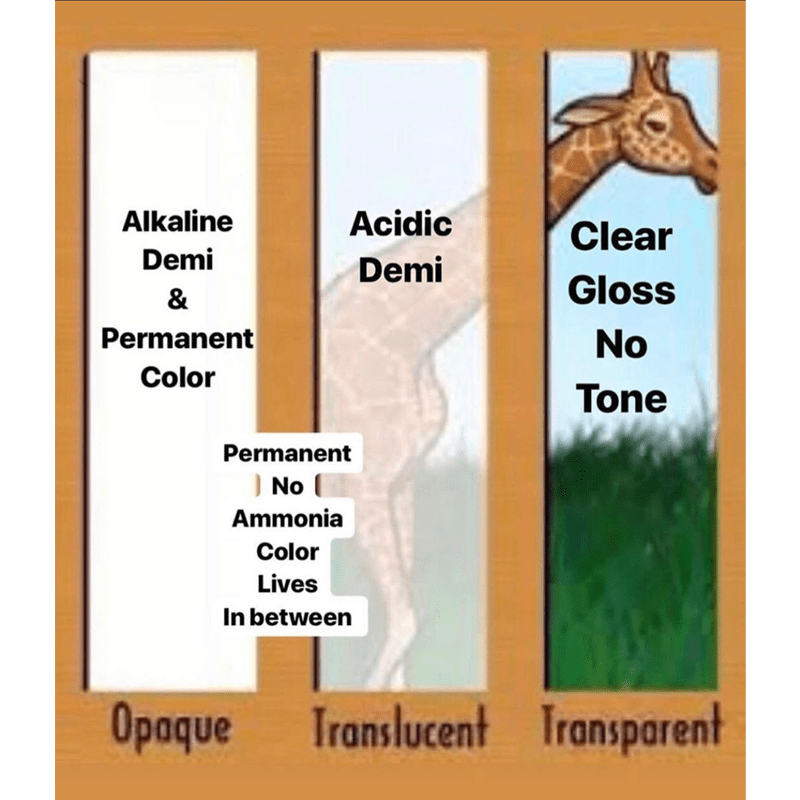 @lisalovesbalayage Lisa Walker Acidic Alkaline Clear Demi Permanent Color Chart