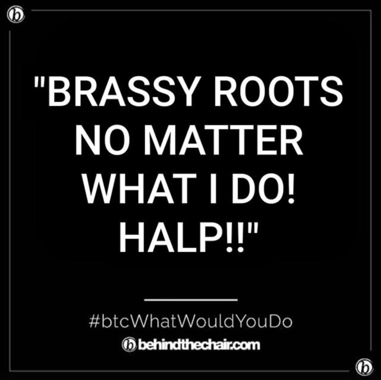 what-would-you-do-wwyd-brassy-roots-featured-image