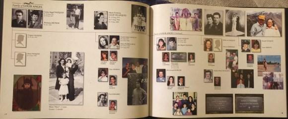 family tree book 7
