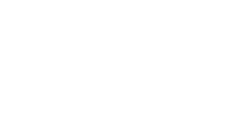 embry riddle logo