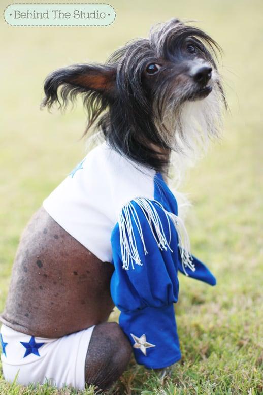 Cookie's Dallas Cowboy Cheerleader Costume