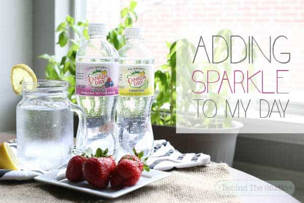 Adding sparkle to my day with Canada Dry #cbias #AddSparkle #shop