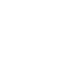 behm s pest control