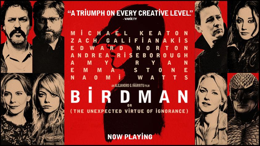 BH73-7887-banner-birdman-film_page_np