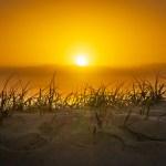 聖經中的太陽 (杜磊) 2019.1.14