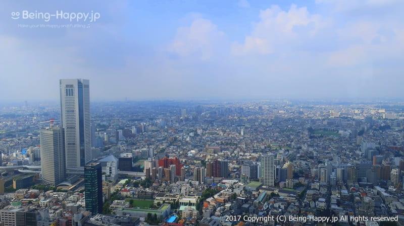 都庁の展望台からみた景色、遠くには山が見えるはずが、この日は曇りでぼやけていました群@西新宿 東京都庁 photo by 茶子(ちゃこ)