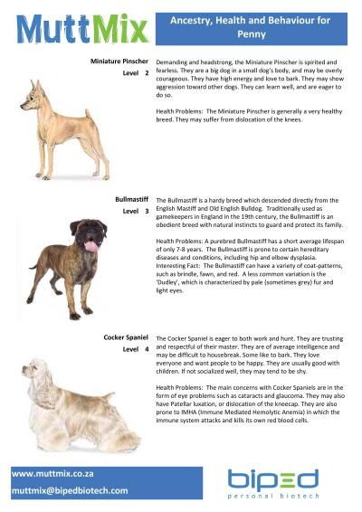 MuttMix_Penny Breed Info (BP04040)-page-001