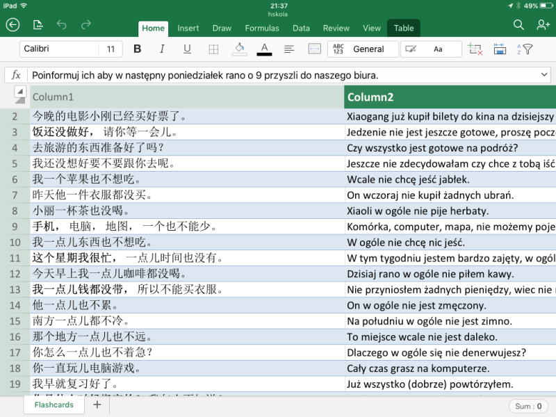 Excel spreadsheet showing Chinese sentences in first column and Polish sentence translations in second column.