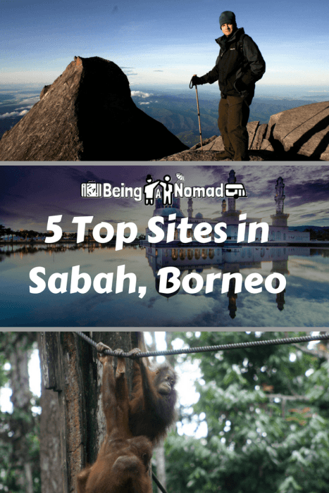 Malaysian Borneo's Sabah is a wonderful place with tons to satisfy all types of travellers. Here's my list of the top 5 Sabah things to do. #Malaysia #Borneo #Sepilok #Sabah #LakeSukau