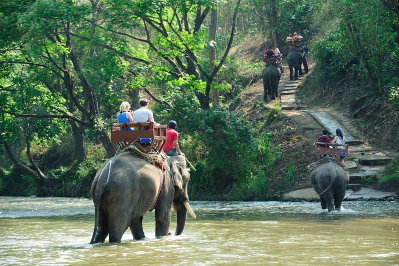 Elephant riding through the jungle and up some steps -- a practice we don't endorse as meaningful travel.