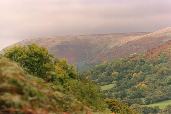 1 View across valley from Troedi dingle - edited copy