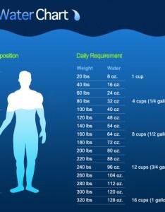 The daily water chart being bettr also  rh beingbettr wordpress