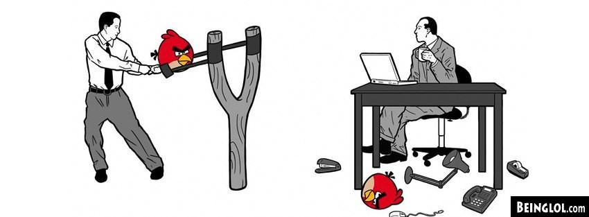 Office Angry Birds Facebook Timeline Cover