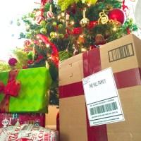 Santa's Special Delivery