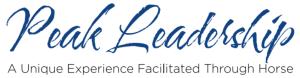 Peak Leadership