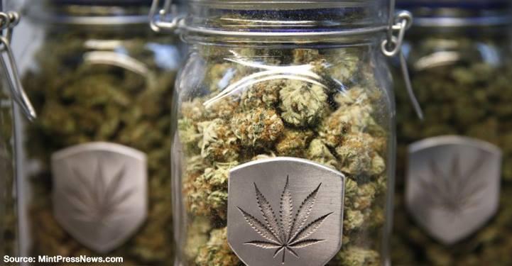 mintpressnews-marijuana