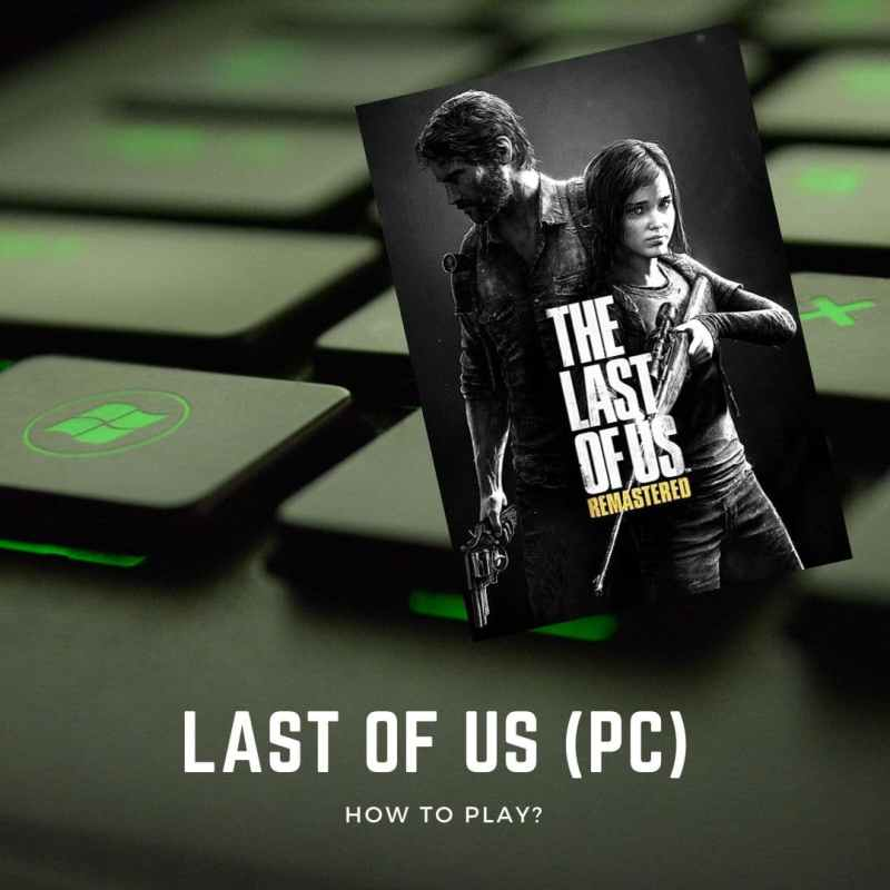 last of us on pc