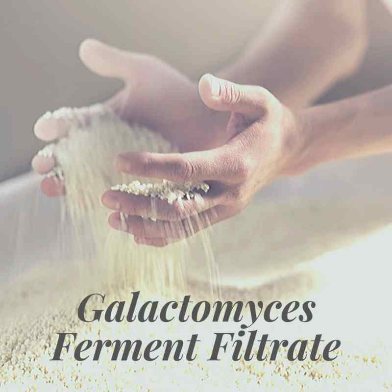 Galactomyces Ferment Filtrate