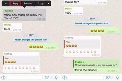 whatsapp messahe embed