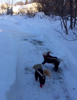 snow-play-1