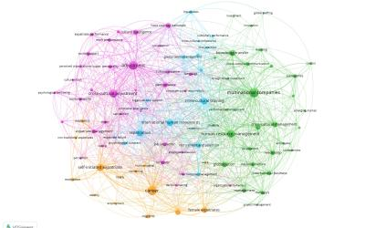 Mapping the expatriate literature: a bibliometric review of the field from 1998 to 2017 and identification of current research fronts