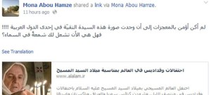 mona-abou-hamze-status1