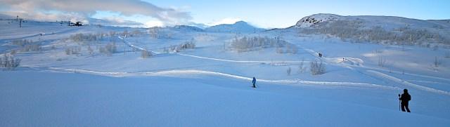Skiheistopp