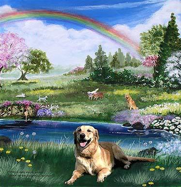 doggie_heaven-767087.jpg