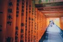Inari Photo copyright Rebecca Lau