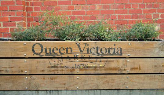 #Queen Victoria