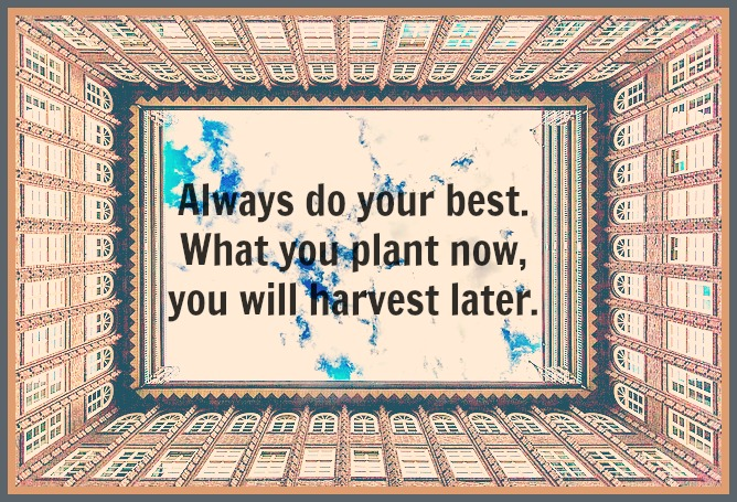 #Og Mandino #quote Always do your best. What you plant now, you will harvest later.
