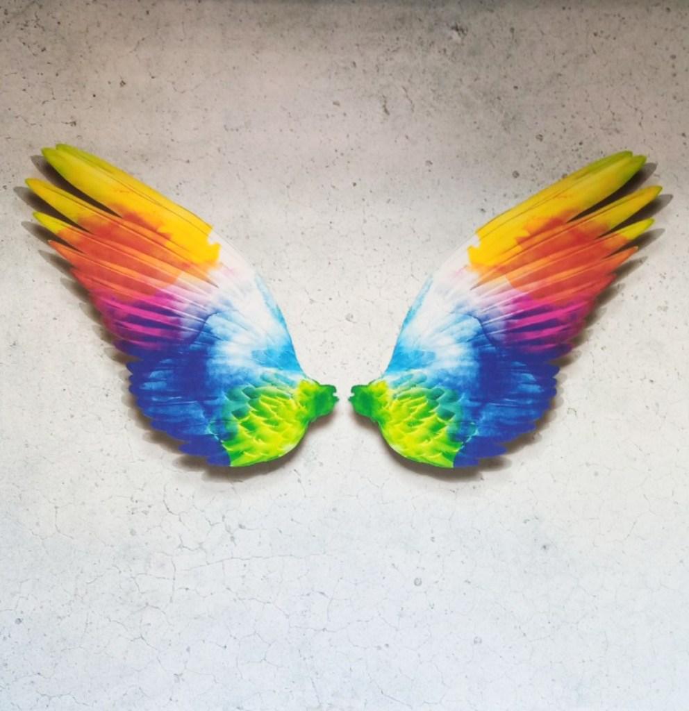 Strassenkunst be kitschig blog  colorful wings art ??