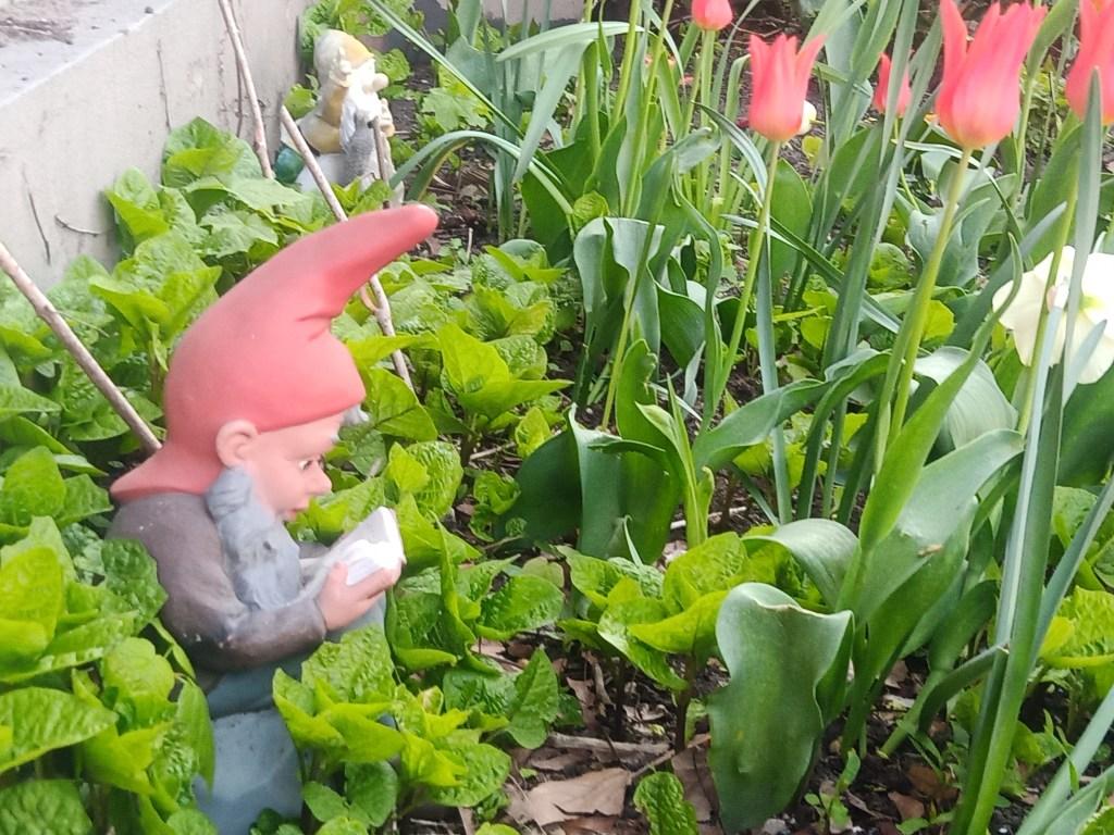 2 garden gnomes in Spring bekitschig blog