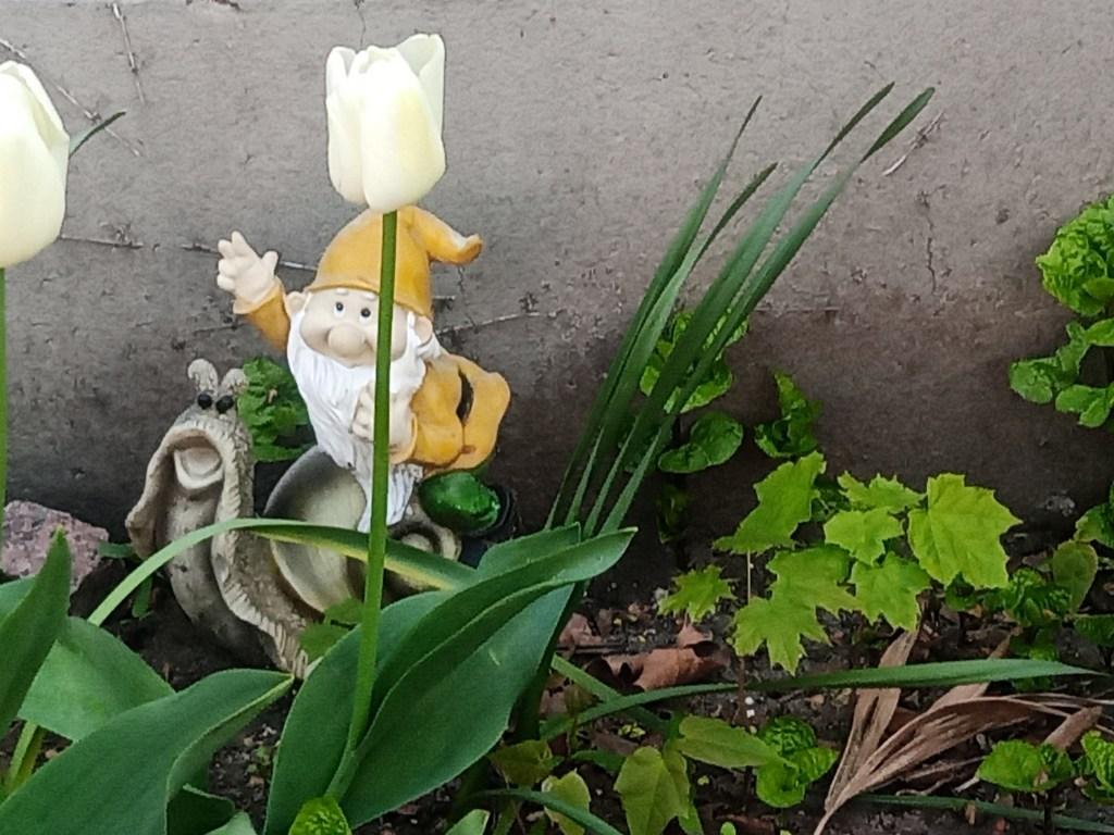 Gartenzwerge im Frühling